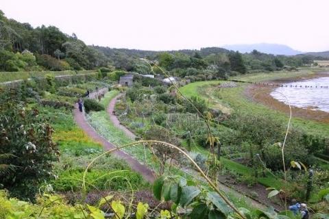 Jardin Inverewe