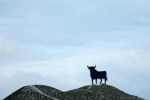 eec21ca2ea6a Le taureau Osborne, Balade à Saragosse par Les voyageurs   GlobeKid