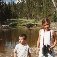 Le parc du Yellowstone