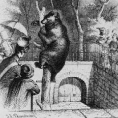 Jardin des plantes fosse aux ours à partir d'une illustration de J.L Grandville