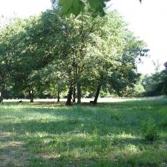 Parc à Uzès par Salomé